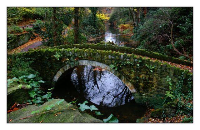 bridged possibility